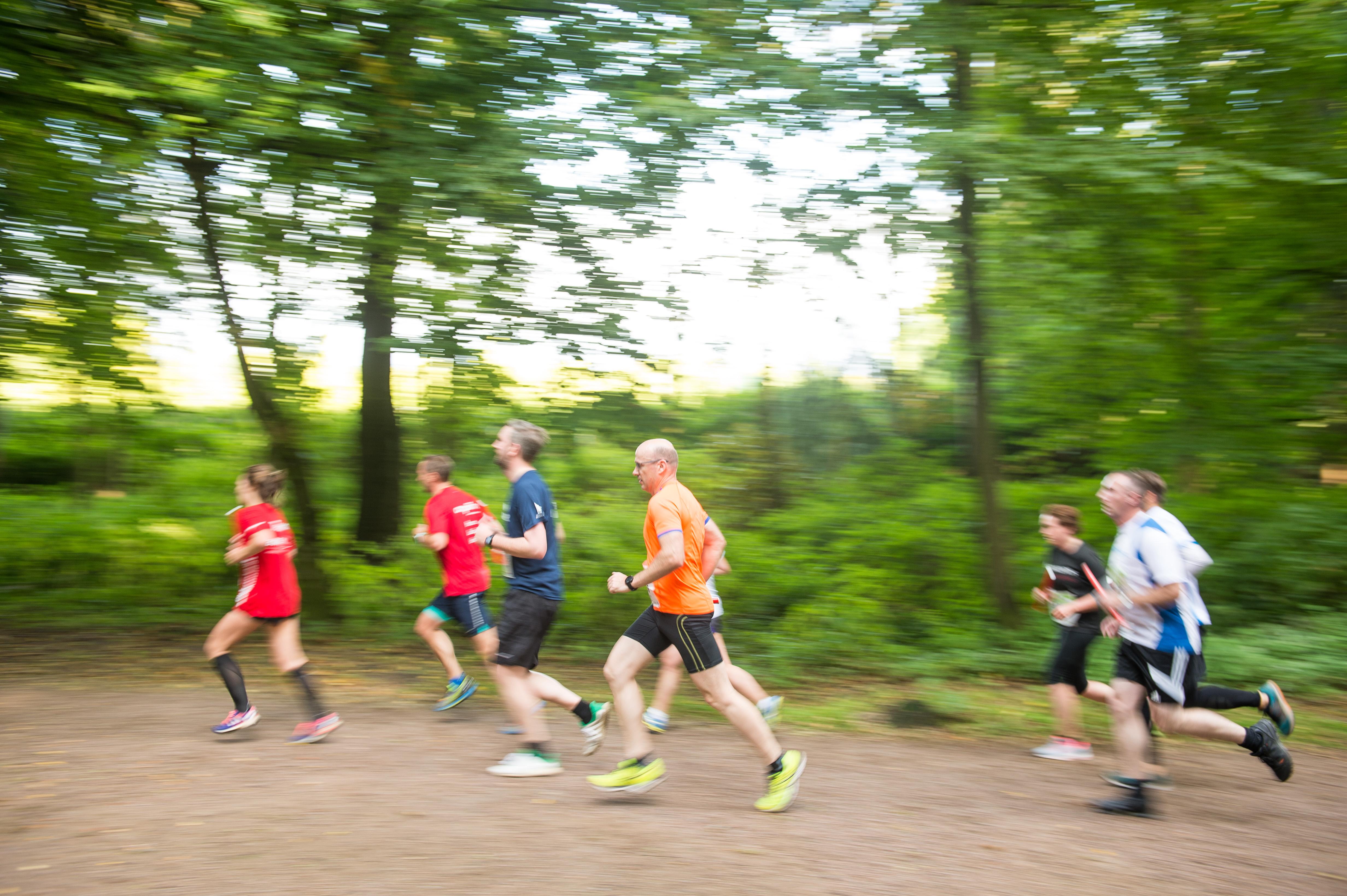 MOPO Team-Staffellauf am 31.08.2017 in Hamburg. Foto: Daniel Reinhardt